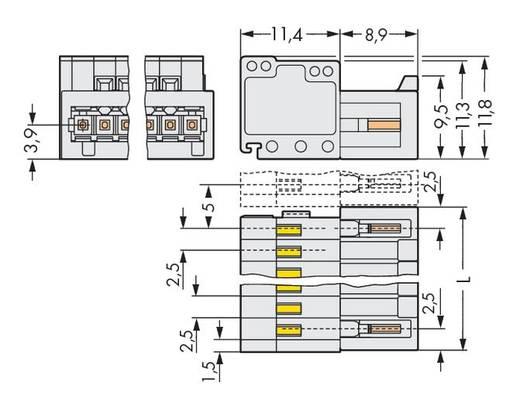 WAGO 733-206 Male header (standaard) 2092 Totaal aantal polen 6 Rastermaat: 2.50 mm 100 stuks