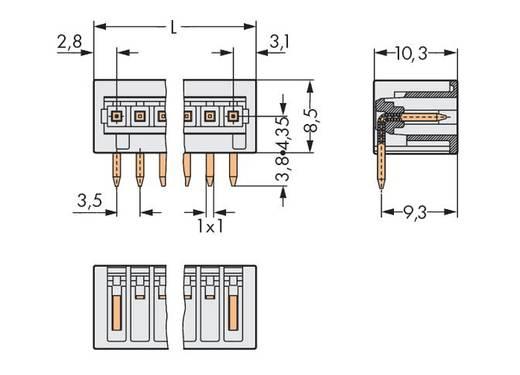 WAGO 734-169 Male header (standaard) 2140 Totaal aantal polen 9 Rastermaat: 3.50 mm 100 stuks