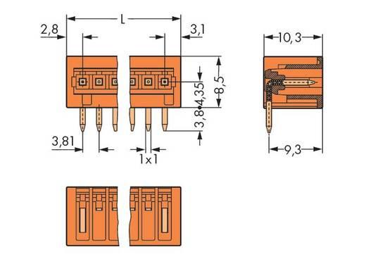 WAGO 734-266 Male header (standaard) 2140 Totaal aantal polen 6 Rastermaat: 3.81 mm 100 stuks