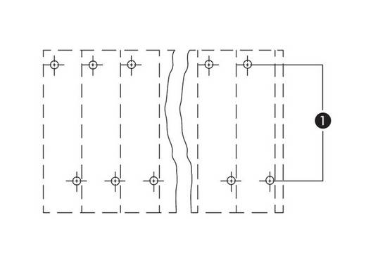 Dubbeldeksklem 2.50 mm² Aantal polen 24 WAGO Grijs 28 stuks
