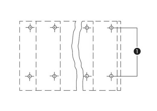 Dubbeldeksklem 2.50 mm² Aantal polen 20 WAGO Grijs 21 stuks