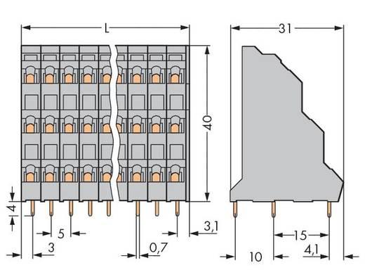 Drie niveau klem 2.50 mm² Aantal polen 24 WAGO Grijs 24 stuks