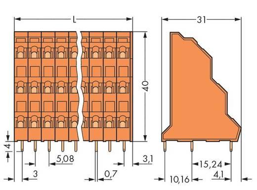 Drie niveau klem 2.50 mm² Aantal polen 48 TRIPLE DECK PCB MNT TERM 16 POLE 0. WAGO Oranje 12 stuks
