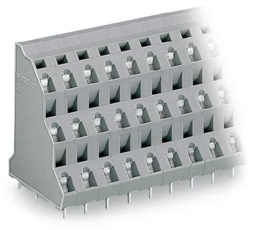 Drie niveau klem 2.50 mm² Aantal polen 48 WAGO Grijs 8 stuks