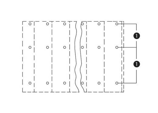 Drie niveau klem 2.50 mm² Aantal polen 24 WAGO Grijs 16 stuks
