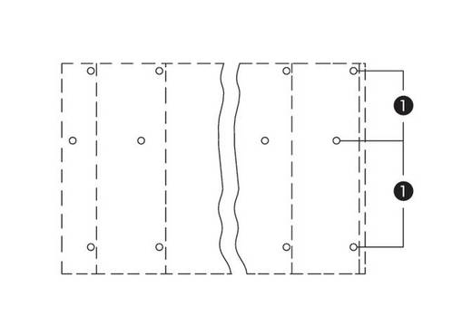 Drie niveau klem 2.50 mm² Aantal polen 24 WAGO Grijs 12 stuks