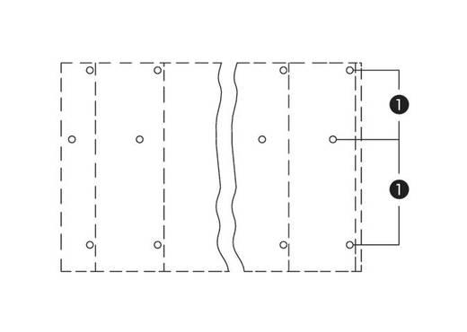Drie niveau klem 2.50 mm² Aantal polen 24 WAGO Oranje 12 stuks