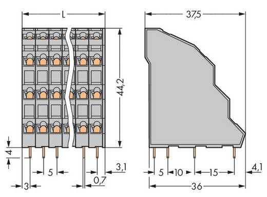Vier niveau klem 2.50 mm² Aantal polen 12 738-103 WAGO Grijs 48 stuks