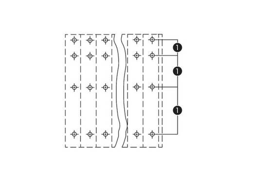 Vier niveau klem 2.50 mm² Aantal polen 12 738-303 WAGO Oranje 48 stuks