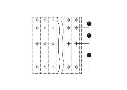 Vier niveau klem 2.50 mm² Aantal polen 12 WAGO Grijs 48 stuks