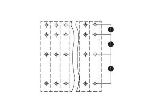 Vier niveau klem 2.50 mm² Aantal polen 96 QUAD DECK PCB TERMINAL 24 x4 POLE 0. WAGO Oranje 6 stuks