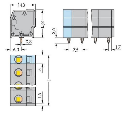 Veerkachtklemblok 2.50 mm² Aantal polen 10 739-210/100-000 WAGO Grijs 60 stuks
