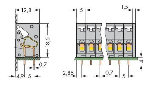 Veerkachtklemblok 2.50 mm² Aantal polen 5 WAGO Grijs 180 stuks