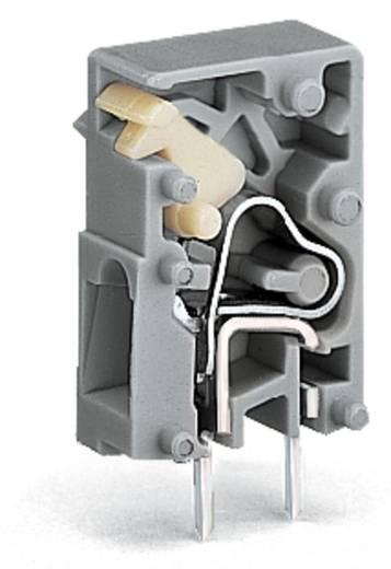 Veerkachtklemblok 2.50 mm² Aantal polen 1 WAGO Grijs 4320 stuks