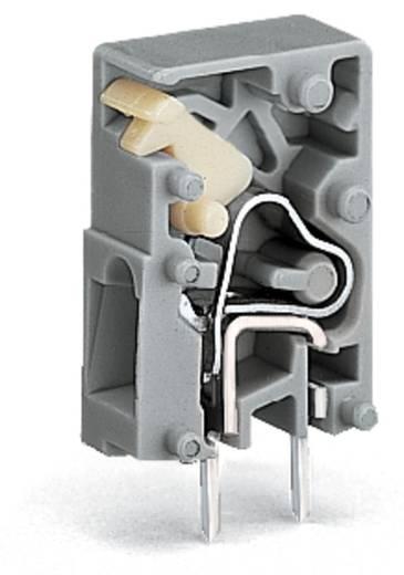 Veerkachtklemblok 2.50 mm² Aantal polen 1 WAGO Grijs 1000 stuks