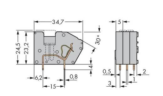 Veerkachtklemblok 2.50 mm² Aantal polen 1 742-121 WAGO Grijs 300 stuks