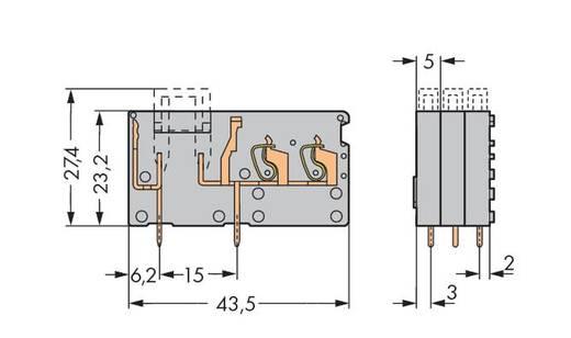 Veerkachtklemblok 2.50 mm² Aantal polen 1 742-161 WAGO Grijs 200 stuks