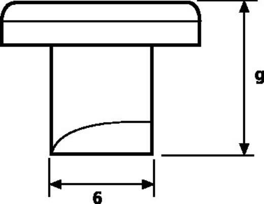 Bevestigingselement ZP1 ZP1-N6-WH HellermannTyton