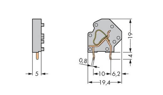 Veerkachtklemblok 4.00 mm² Aantal polen 1 WAGO Grijs 200 stuks