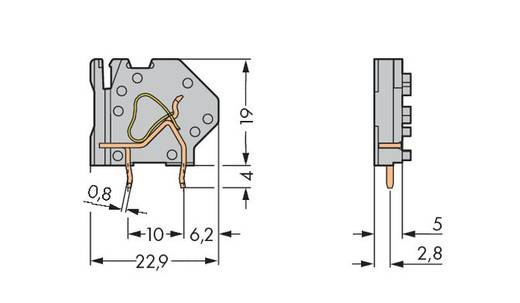 Veerkachtklemblok 4.00 mm² Aantal polen 1 745-808 WAGO Lichtgroen 200 stuks