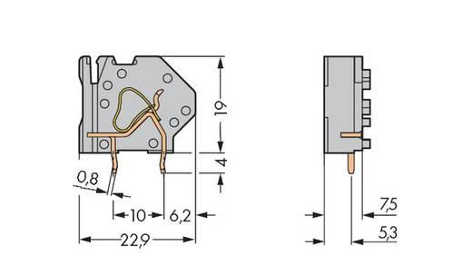 Veerkachtklemblok 4.00 mm² Aantal polen 1 EINZELKLEMME RM 7,5MM HELLGREEN WAGO Lichtgroen 200 stuks