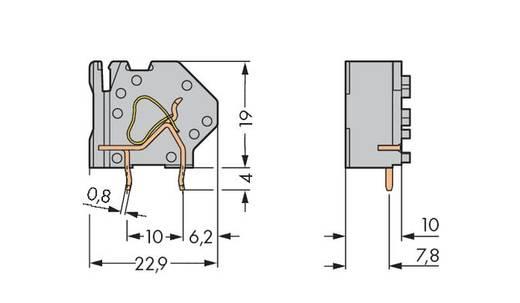 Veerkachtklemblok 4.00 mm² Aantal polen 1 WAGO Lichtgrijs 200 stuks