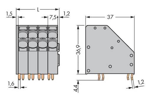 Veerkachtklemblok 10.00 mm² Aantal polen 2 WAGO Grijs 60 stuks