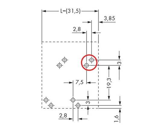Veerkachtklemblok 10.00 mm² Aantal polen 7 WAGO Grijs 16 stuks