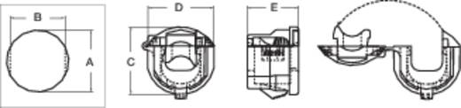 Wartel Klem-Ø (max.) 7.4 mm Polyamide
