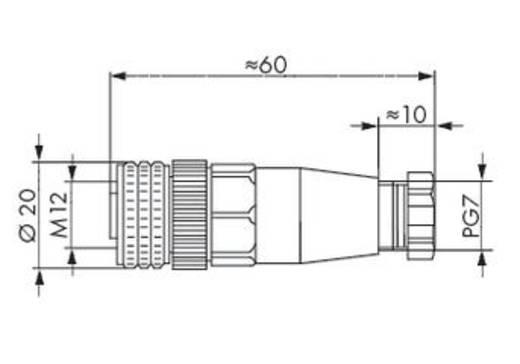 WAGO 756-9211/040-000 Connector voor sensor-/actuatorkabel Inhoud: 5 stuks