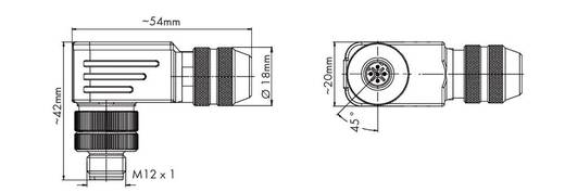 WAGO M12-stekker Inhoud: 1 stuks