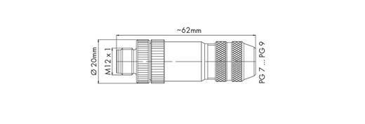 WAGO 756-9501/060-000 M12-stekker Inhoud: 1 stuks