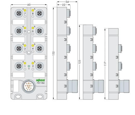 Passieve sensor/actorbox M12-verdeler met metalen schroefdraad 757-144