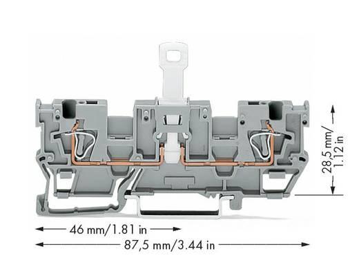 WAGO 769-243 1-aderige/1-aderige scheidingsbasisklem 50 stuks