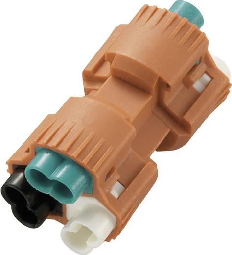 Zwakstroomverbinder Flexibel: - Massief: 0.824-3.307 mm² Aantal polen: 3 1 stuks Oranje