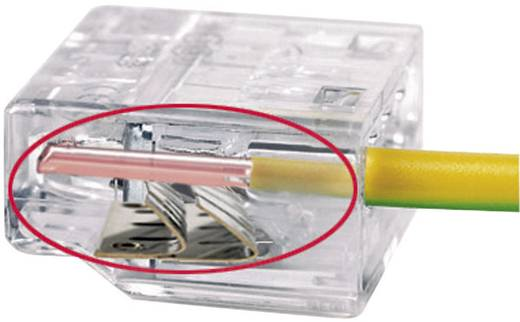 HellermannTyton HECP-4 Verbindingsklem Flexibel: - Massief: 0.5-2.5 mm² Aantal polen: 4 1 stuks Transparant