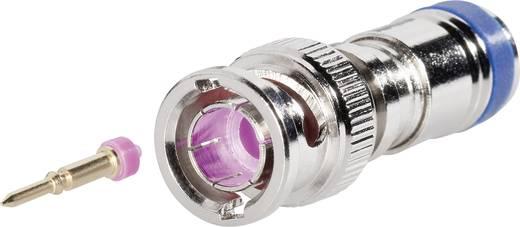 Interkabel BNC-KPS-75-37 BNC-connector Stekker, recht 75 Ω 1 stuks