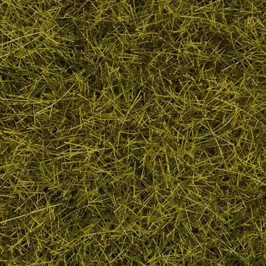 NOCH Natuur + grasmat weide, vezellengte 12 mm (l x b) 440 mm x 290 mm 412