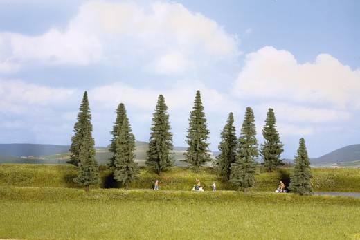 Set bomen Spar Hoogte (min.): 100 mm Hoogte (max.): 140 mm NOCH 24240 Donkergroen 10 stuks