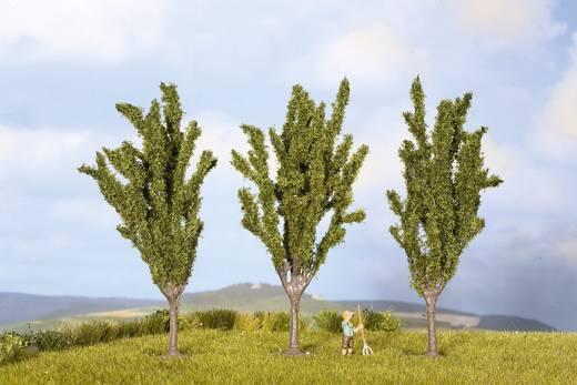Set bomen Populieren Hoogte (min.): 55 mm Hoogte (max.): 55 mm NOCH 25525 Groen 3 stuks