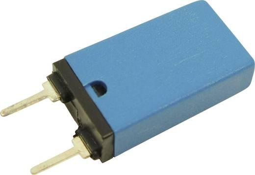 Cliff AN-801 Inbouwzekering Autoreset 250 V/AC 8 A 1 stuks