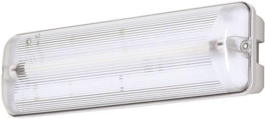 B-SAFETY BR 563 030 Vluchtwegverlichting Plafondopbouwmontage, Wandopbouwmontage