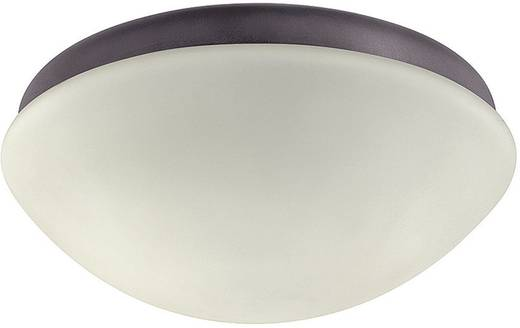 Lamp voor plafondventilator Hunter Outdoor Arod Aluminium