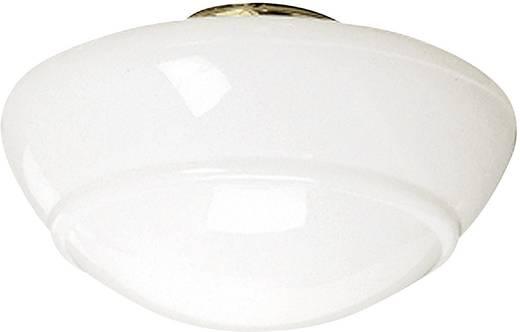 Plafondventilator-Lamp Schoolhouse modern BR