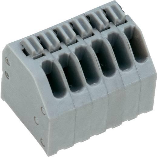 Veerkachtklemblok 0.75 mm² Aantal polen 4 AK4191/4KDVP-2.5 PTR Kiezel-grijs 1 stuks