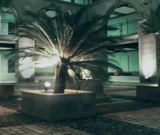 Outdoor 572167 Buitenschijnwerper LED 3 W Koud-wit Zwart