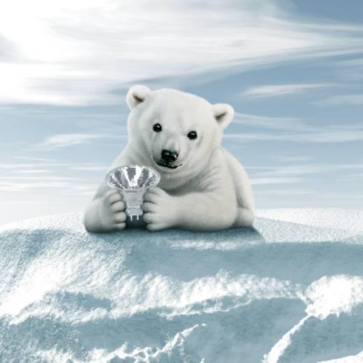 OSRAM Eco-halogeen 12 V GY6.35 35 W Warm-wit Energielabel: C Speciale vorm Dimbaar 1 stuks