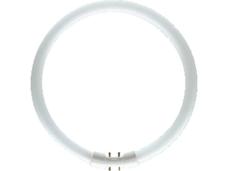 2Gx13 LUMILUX T5 tl-ringlamp 22W, 840
