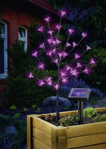 Solar decolamp Bloesemstruik LED 0.6 W Roze Esotec Blütenstrauch 102104 Antraciet