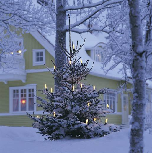 Kerstboomverlichting Buiten werkt op het lichtnet